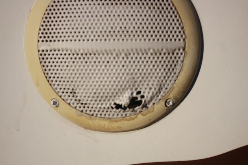 Melted speaker