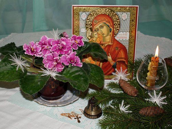 ЕК-Подарок на Рождество.* Фиалки без границ.