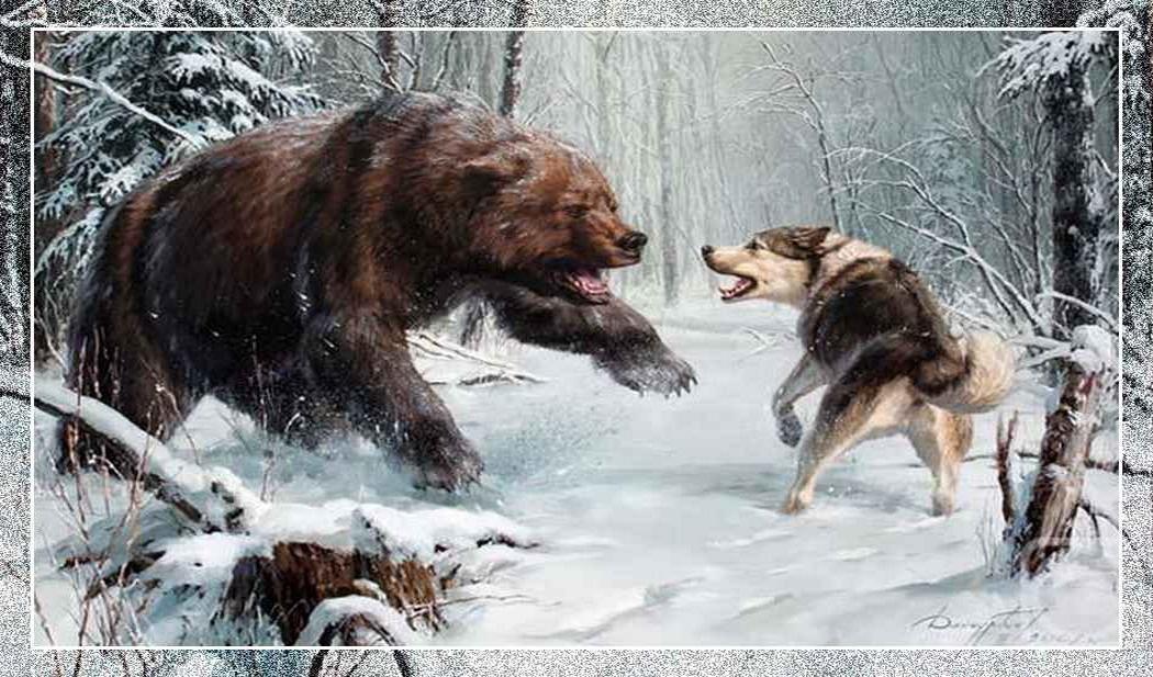 Собака и медведь (663x512, 77Kb) .