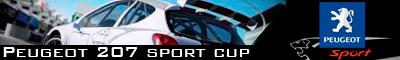 Copa Peugeot 207 (Finalizado)
