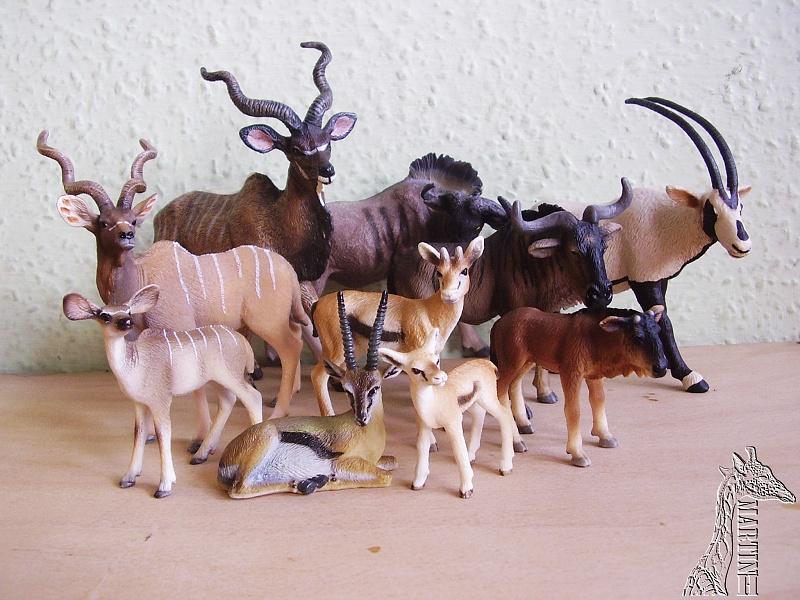 [转载]国外动物模型分类收集图(新)