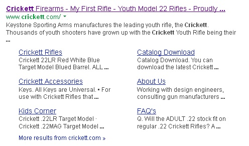 Gun Control Riffle11
