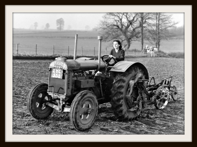 Land Girls 800911